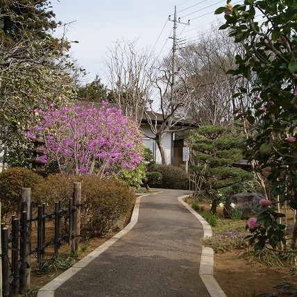 春の風景(2011年)