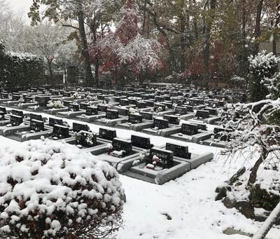 積雪11時.JPG